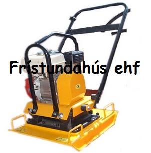 FSH-100