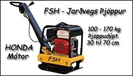 FSH-170